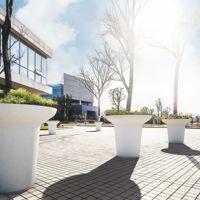 BALZAC Jardinière béton & banc bois│Metalco mobilier urbain design